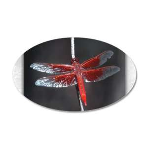 38.5x24.5O Wall Vinyl Sticker Red Flame Dragonfly