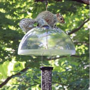 DROLL YANKEES INC, DROLL YANKEE SQUIRREL GUARD, Part No