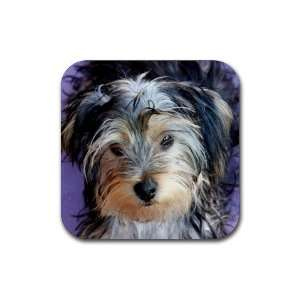 Yorkshire Terrier Puppy Dog 3 Rubber Coaster (4 pack