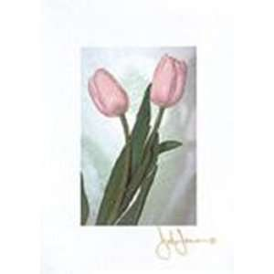 Pink Tulip by John Jones 5x7