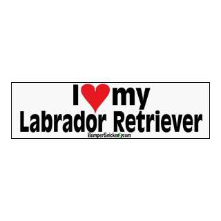 I Love My Lab   bumper stickers (Large 14x4 inches