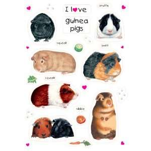 Love Guinea Pigs (Meerschweinchen)   Fun Fridge Magnets   lustige